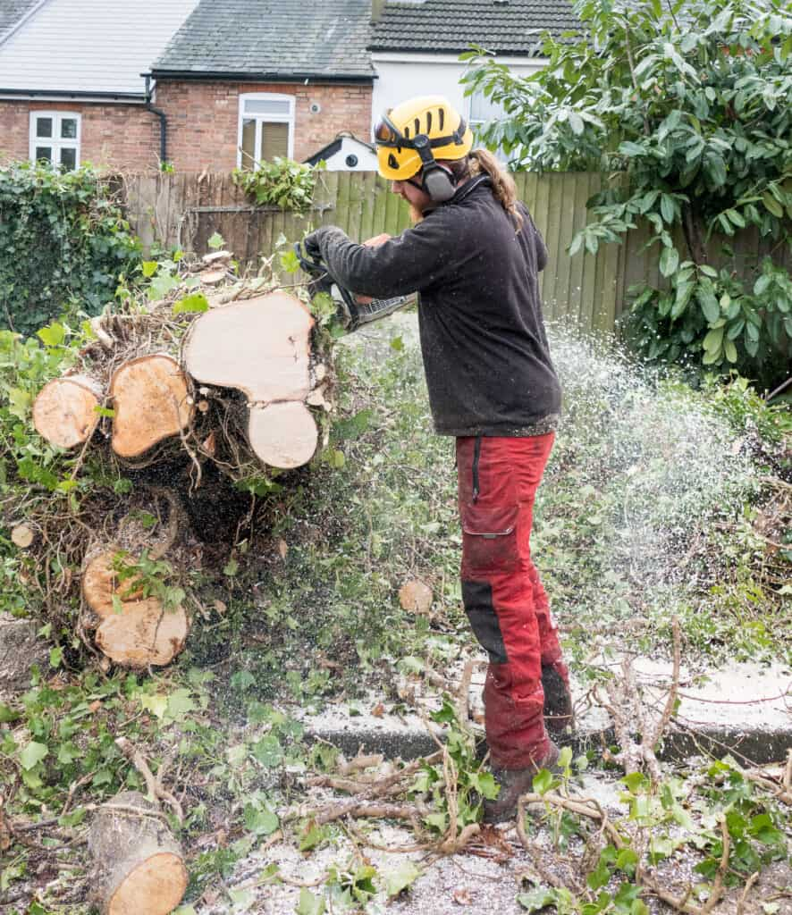 sutton Coldfield Tree removal